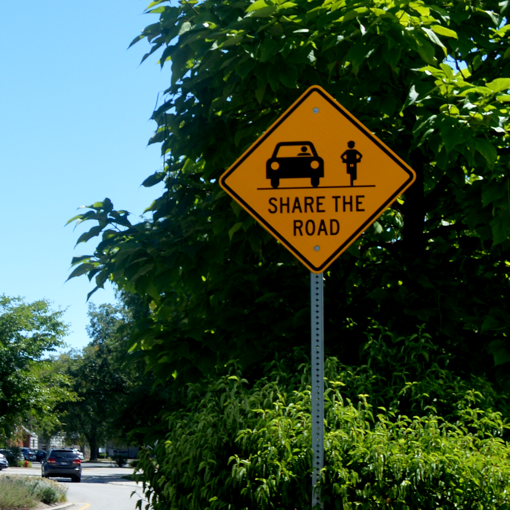 Sign saying Share the Road
